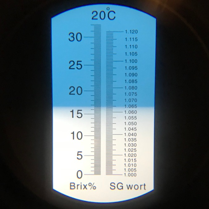 IMG_1006 brewday complete
